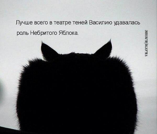 _eiaszQ_nac